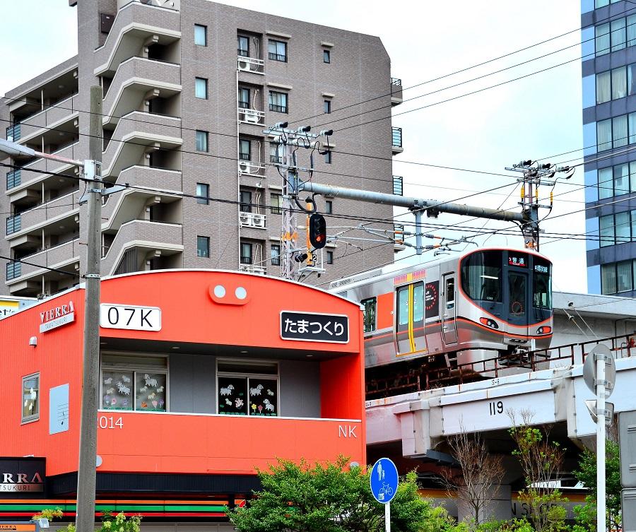 NBO_5638 - コピー (2).JPG